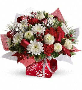 Teleflora's Winter Snowflake Present Perfect in Wall Township NJ, Wildflowers Florist & Gifts