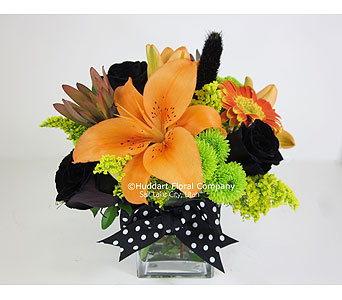 Huddart Black Cat Booquet in Salt Lake City UT, Huddart Floral