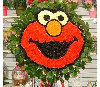 ELMO'S FACE in Brooklyn NY, David Shannon Florist & Nursery