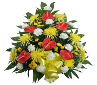 Tropical Paradise Traditional Spray in Indianapolis IN, Steve's Flowers & Gifts