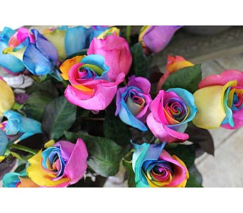 Rainbow Roses in Newmarket ON, Blooming Wellies Flower Boutique