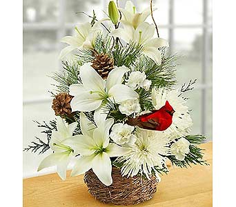 Wintertime Birds Nest of Flowers LG in Palm Desert CA, Milan's Flowers & Gifts
