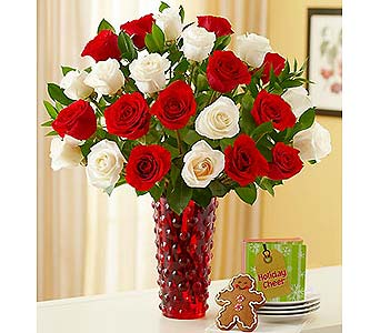 Two Dozen Red and White Roses in Palm Desert CA, Milan's Flowers & Gifts