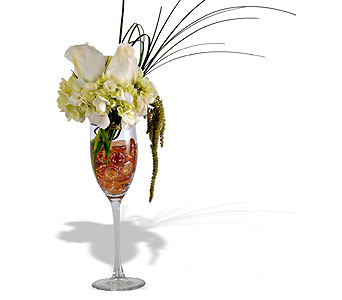 CHAMPAGNE COCKTAIL in St. Louis MO, Walter Knoll Florist