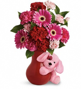 Teleflora's Send a Hug Sweetheart in Winston Salem NC, Sherwood Flower Shop, Inc.