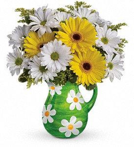 Teleflora's Darling Daisies Bouquet in Winston Salem NC, Sherwood Flower Shop, Inc.