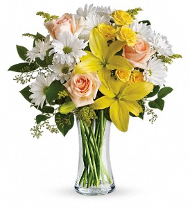 Teleflora's Daisies and Sunbeams in Austintown OH, Crystal Vase Florist