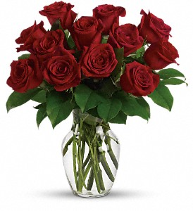 Enduring Passion - 12 Red Roses in Dubuque IA, New White Florist