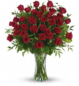 Breathtaking Beauty - 3 Dozen Long Stemmed Roses in Romeo MI, The Village Florist Of Romeo