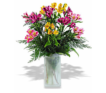 WINTER ALSTROMERIA BOUQUET in St. Louis MO, Walter Knoll Florist