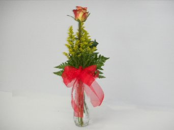 1 Circus or HighMagic rose Vase in Camden AR, Camden Flower Shop