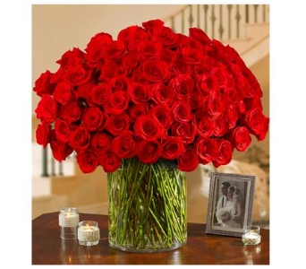 100 Red Roses in a Vase in Woodbridge VA, Brandon's Flowers