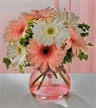 pink and white gerberas in Bethany OK, Ann's Secret Garden