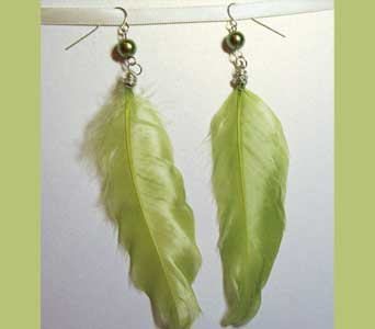 Light Green Feather Earrings in Lawrence KS, Englewood Florist
