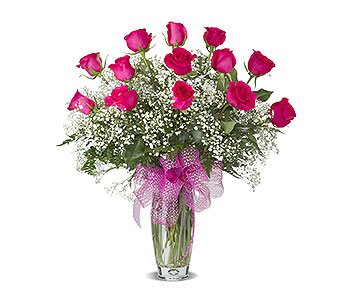 HOT PINK DOZEN ROSES ARRANGED in Gainesville FL, Floral Expressions Florist