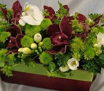 Magic Burgundy in Victoria BC, Fine Floral Designs