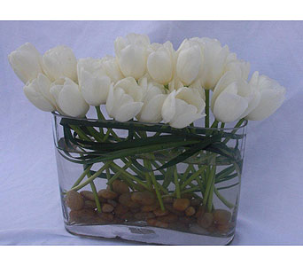 Purity of Tulips in Victoria BC, Fine Floral Designs