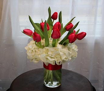 Graceful Tulips in East Syracuse NY, Whistlestop Florist Inc
