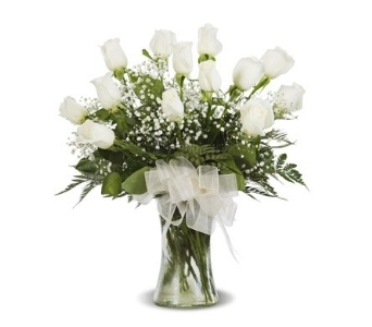 WHITE DOZEN ROSE ARRANGED in Gainesville FL, Floral Expressions Florist
