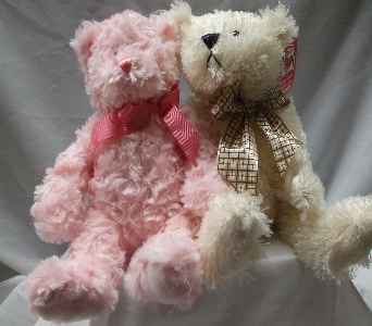 Sweet Cuddly Bears $15.95 and $16.95 in Evansville IN, Cottage Florist & Gifts