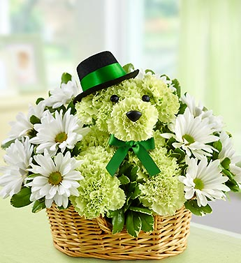 Lucky in Bradenton FL, Ms. Scarlett's Flowers & Gifts