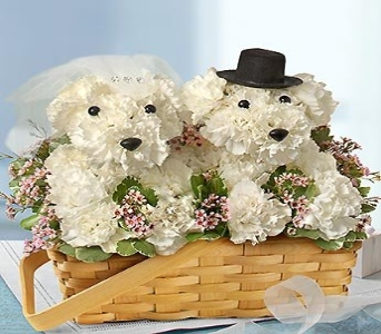 LOVE YOU FUR-EVER in Port Charlotte FL, Punta Gorda Florist Inc.