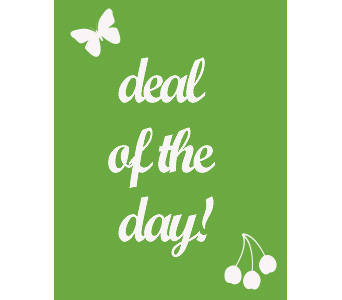 Deal of the Day in Denton TX, Denton Florist