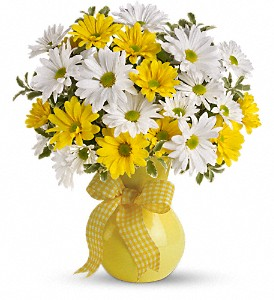 Teleflora's Upsy Daisy in Midland TX, A Flower By Design