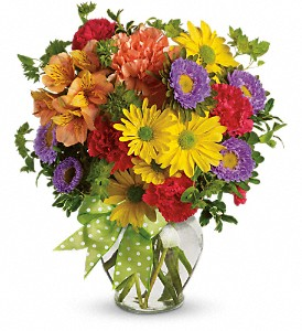 Make a Wish in Clarksburg WV, Clarksburg Area Florist, Bridgeport Area Florist