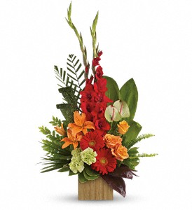 Heart's Companion Bouquet by Teleflora in Oshkosh WI, Flowers & Leaves LLC