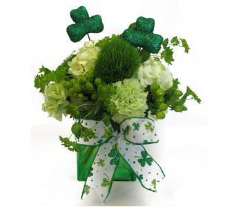 Happy St. Paddy's Day in Amherst NY, The Trillium's Courtyard Florist