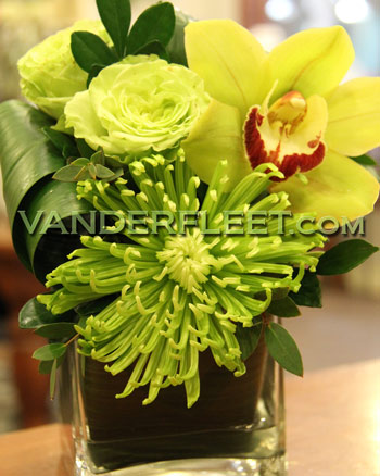 Green Envy Orchid Rose Floral Design in Etobicoke ON, VANDERFLEET Flowers
