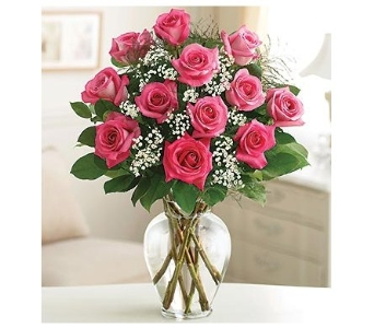 Pink Long Stem Roses in Bradenton FL, Ms. Scarlett's Flowers & Gifts