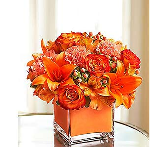 Colors of Love - Orange in Palm Desert CA, Milan's Flowers & Gifts