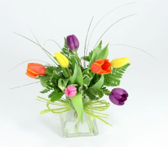 Tulips for Everyone in Bellevue WA, Lawrence The Florist