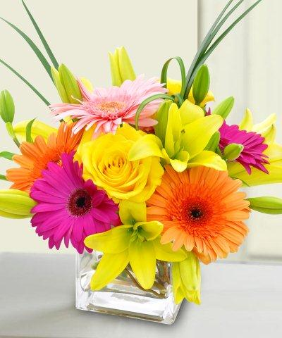 Bright & Cheery in East Syracuse NY, Whistlestop Florist Inc