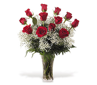 12 Red Roses and Babies Breath in Big Rapids MI, Patterson's Flowers, Inc.