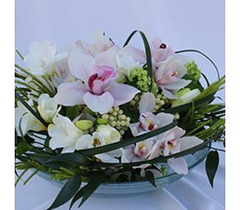 GLAMOROUS ORCHIDS in Victoria BC, Fine Floral Designs