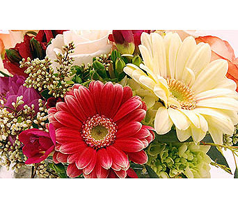 Flowers-Designers-choice in San Clemente CA, Beach City Florist