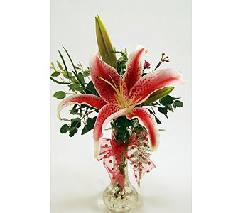 Single-Stem-Stargazer-Lily in San Clemente CA, Beach City Florist