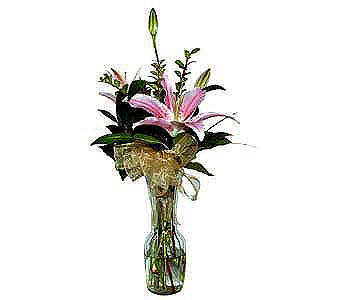 Stargazer-Lily-in-Clear-Glass-Bud-Vase in San Clemente CA, Beach City Florist