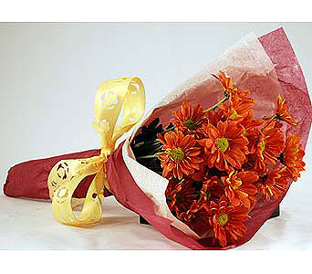 Wrap-of-Orange-Daises in San Clemente CA, Beach City Florist