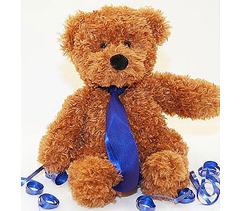 Go-Florist-Democrat-Teddy-Bear in San Clemente CA, Beach City Florist