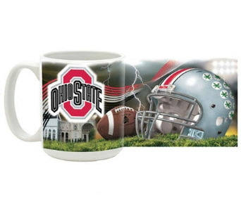 OSU Horse Shoe Mug in Columbus OH, OSUFLOWERS .COM