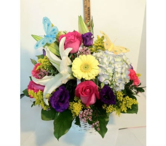 Basket of butterflies in Wellington FL, Wellington Florist