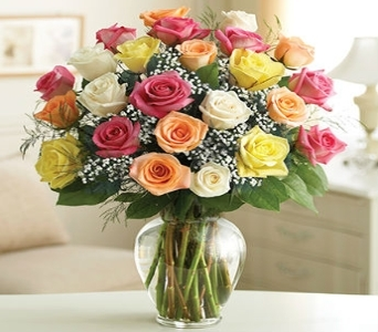 Two Dozen Premium Long Stem Assorted Roses in Chicago IL, Sauganash Flowers