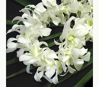 White-Dendrobium-Orchid-Lei in Mission Viejo CA, Conroy's Flowers