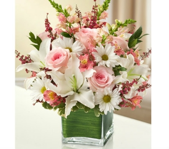 Healing Tears - Pink and White dans Watertown CT, Agnew Florist