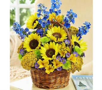 Fields of Europe™ for Summer Basket dans Watertown CT, Agnew Florist
