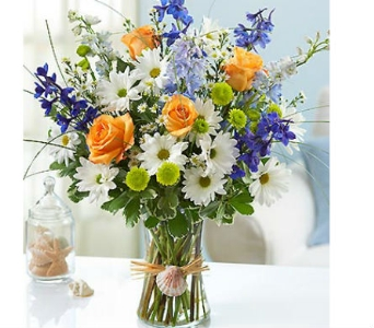 Summer Dunes™ dans Watertown CT, Agnew Florist